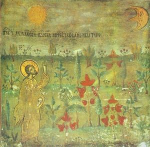 Icon of the Creation of the Plants – F111