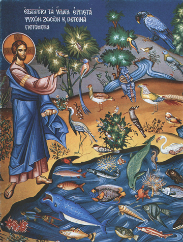 Icon of the Creation of the Animal Kingdom – F70